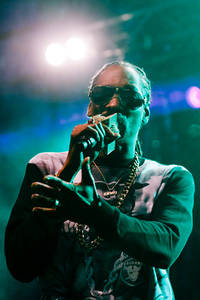 2015-07-25 - Snoop Dogg performs at Flustret, Uppsala